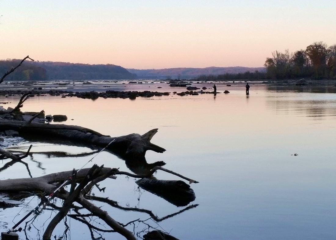 Susquehanna River Below Conowingo Dam
