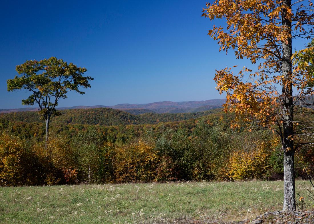 Bucktail Overlook