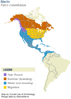 Merlin Cornell Range Map