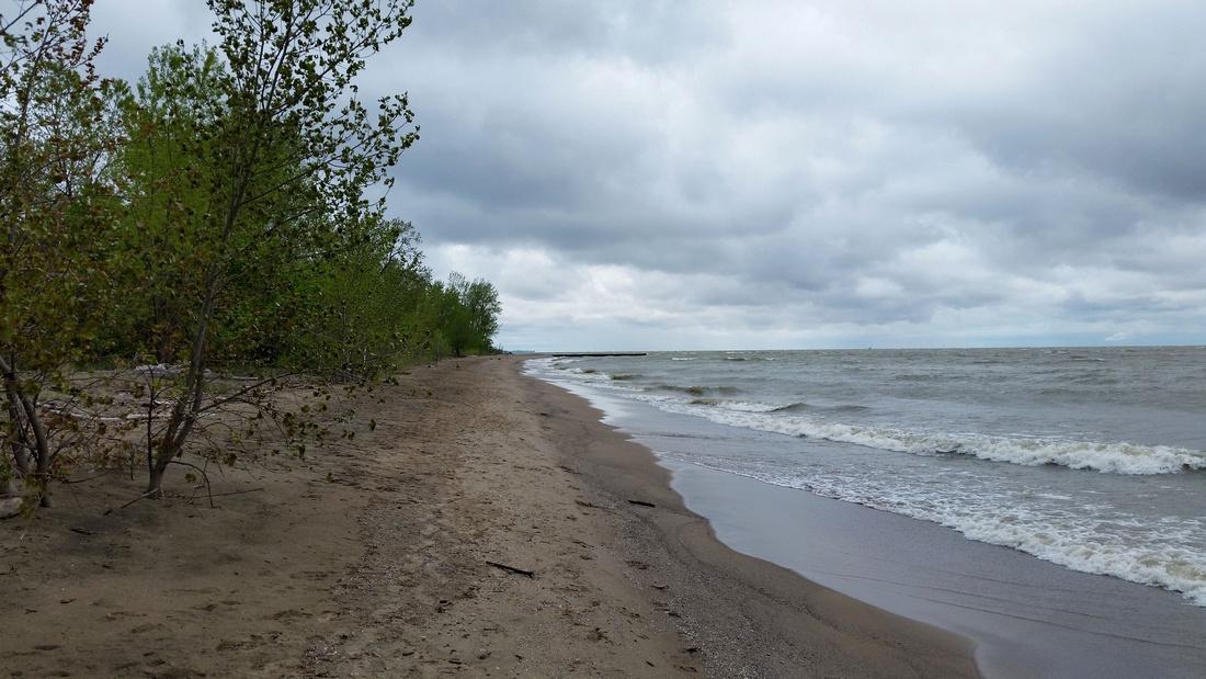 Lake Erie Shoreline @ Magee Marsh